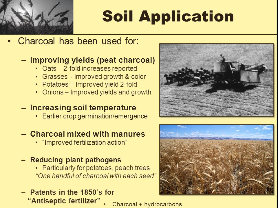 Soil Application Charcoal has been used for: