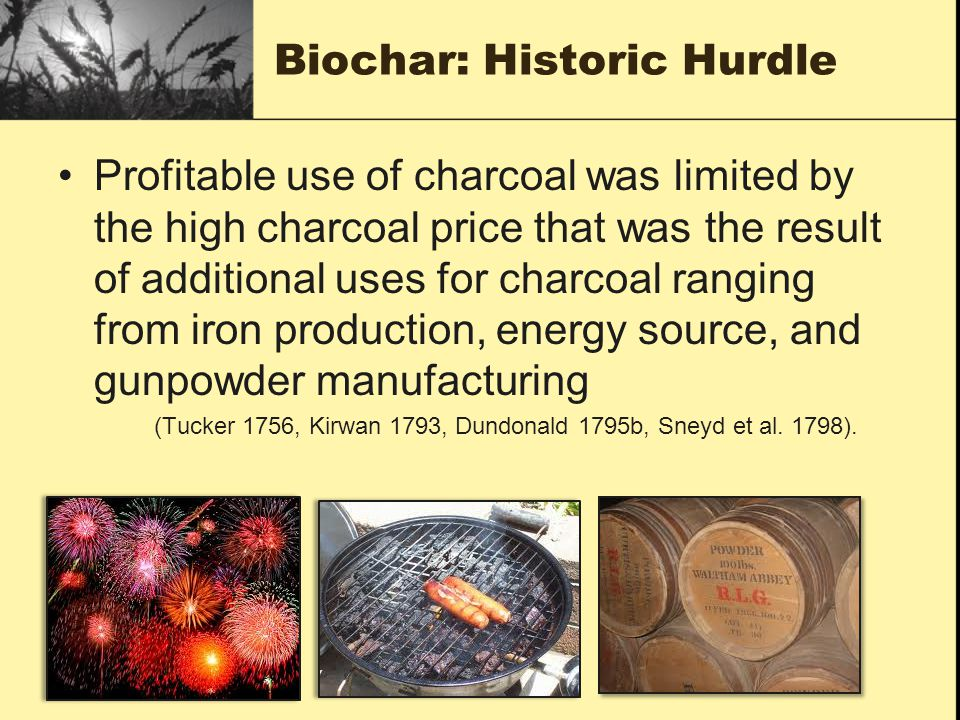 Biochar: Historic Hurdle