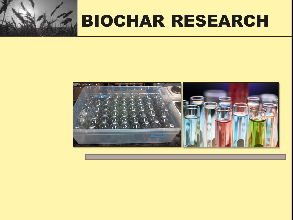 Biochar Research