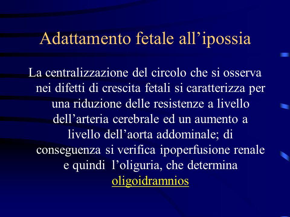 Adattamento fetale all'ipossia