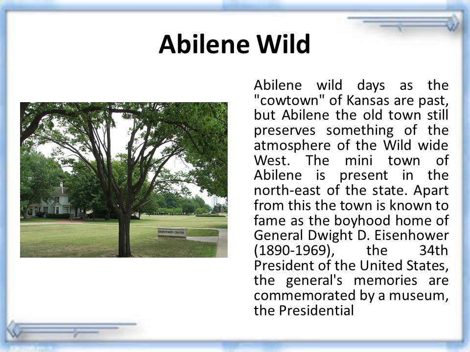 Abilene Wild