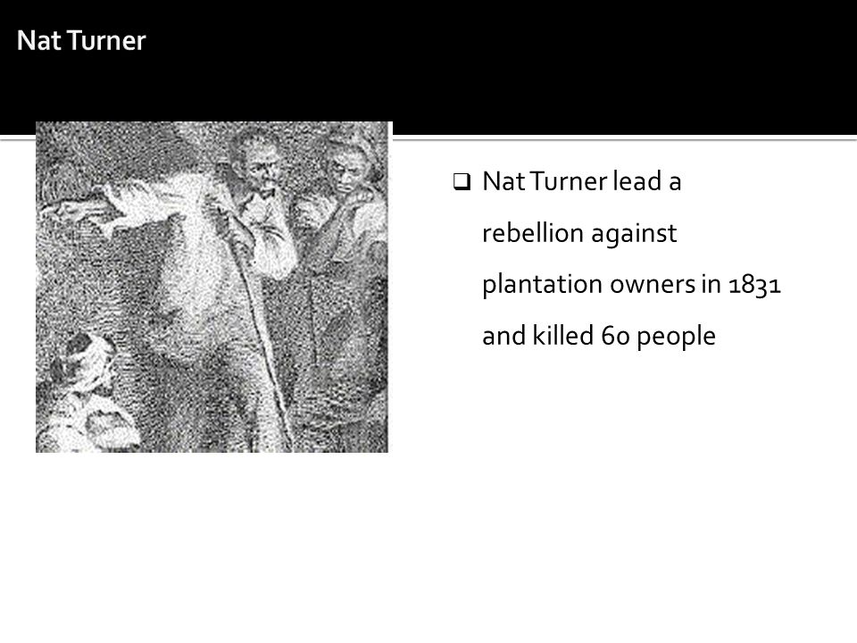 Nat Turner Nat Turner lead a rebellion against plantation owners in 1831 and killed 60 people
