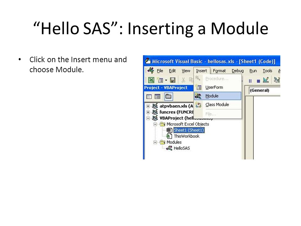 Hello SAS : Inserting a Module