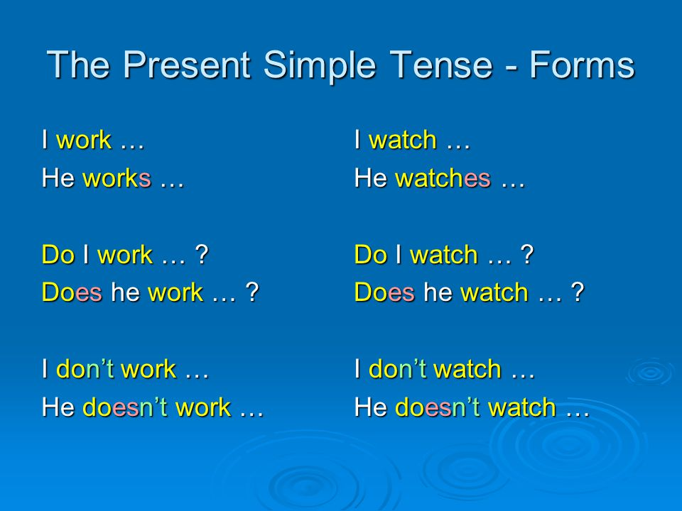The Present Simple Tense - Forms