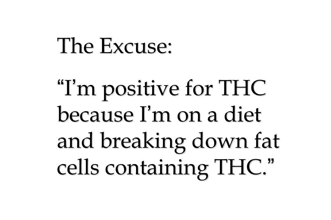The Excuse: I'm positive for THC because I'm on a diet and breaking down fat cells containing THC.