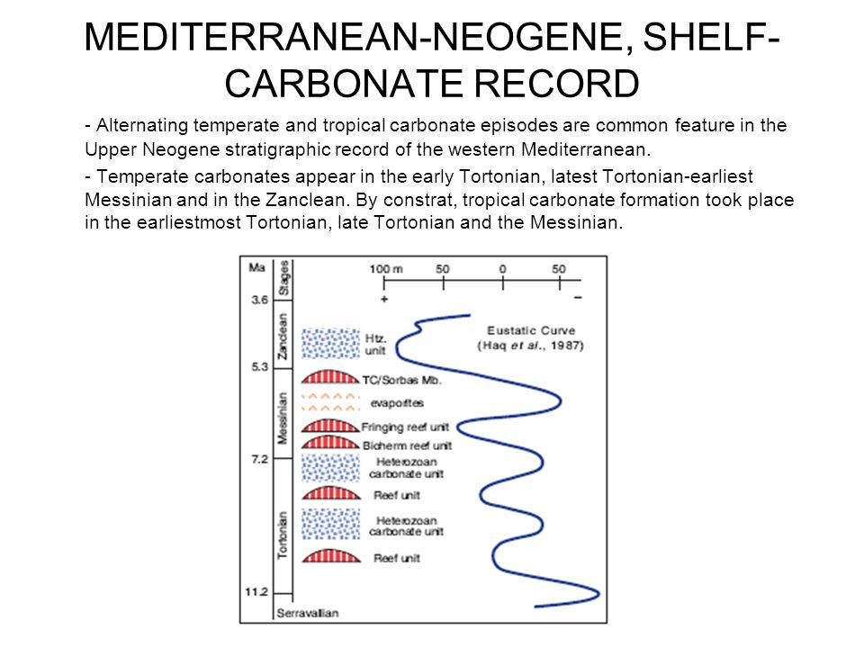 MEDITERRANEAN-NEOGENE, SHELF-CARBONATE RECORD