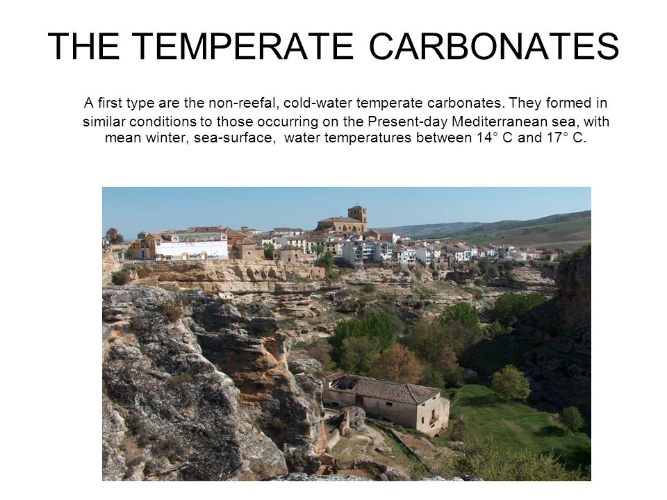 THE TEMPERATE CARBONATES