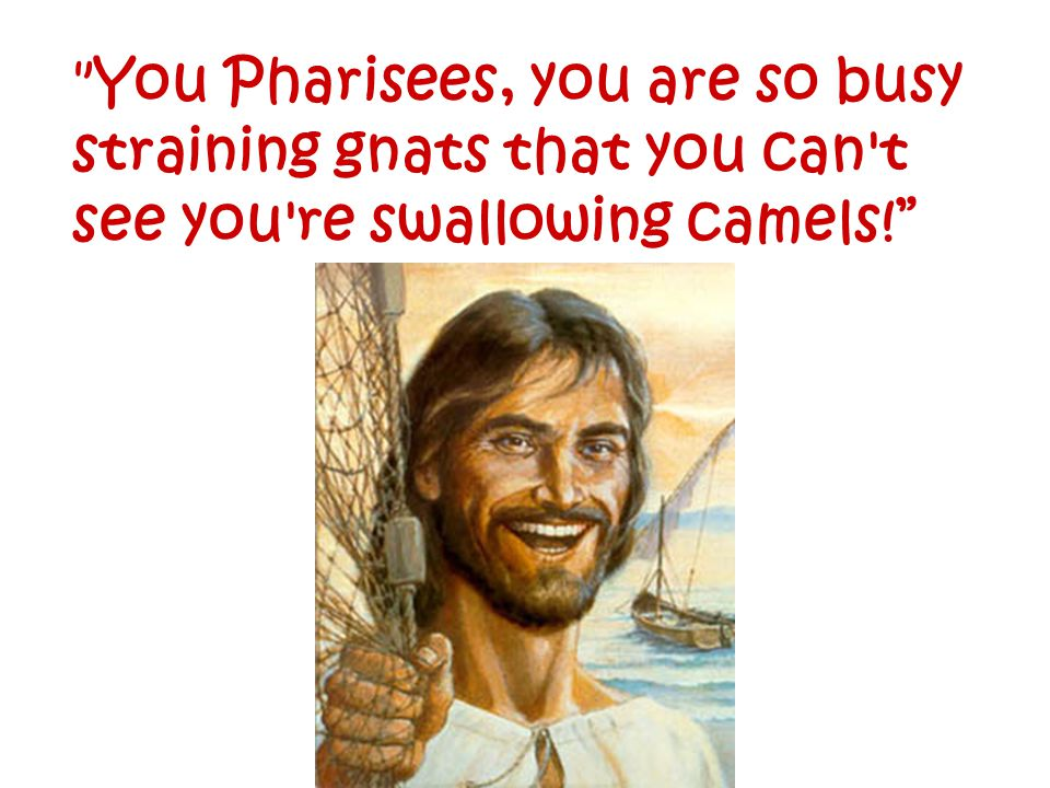 You Pharisees, you are so busy straining gnats that you can t see you re swallowing camels!