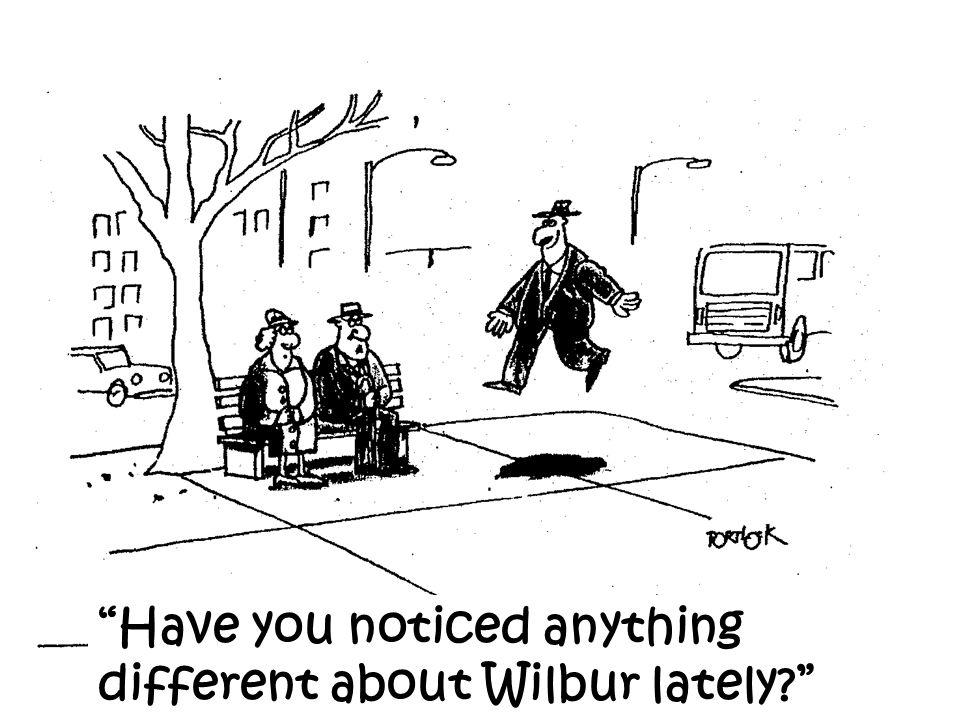 Have you noticed anything different about Wilbur lately
