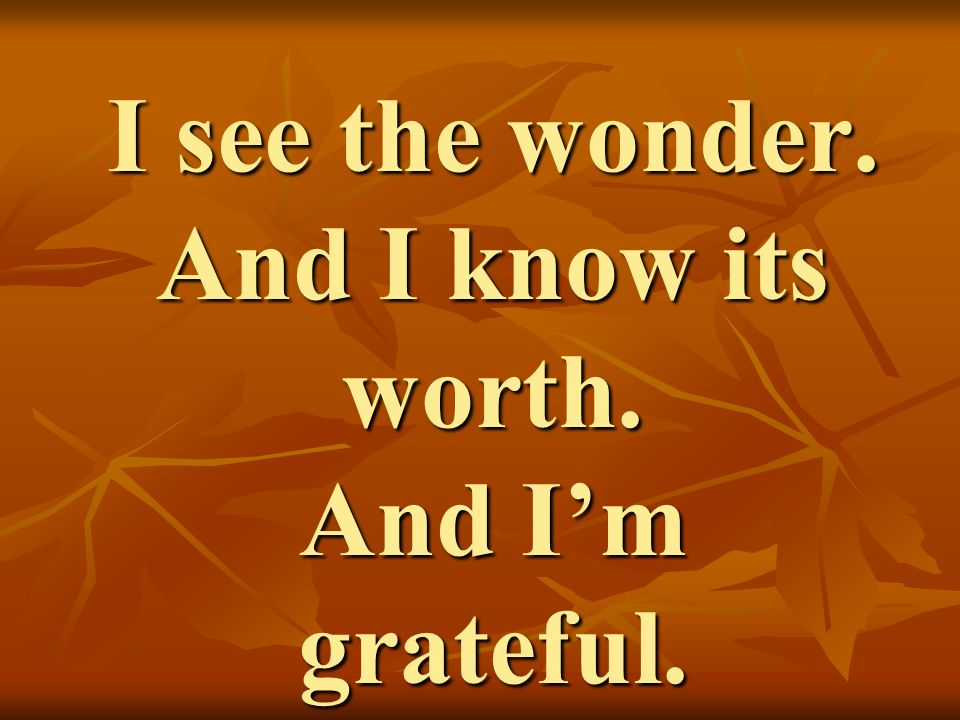 I see the wonder. And I know its worth. And I'm grateful.