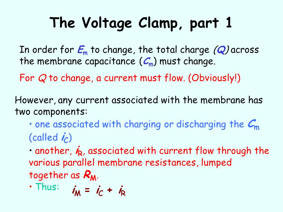 The Voltage Clamp, part 1 iM = iC + iR