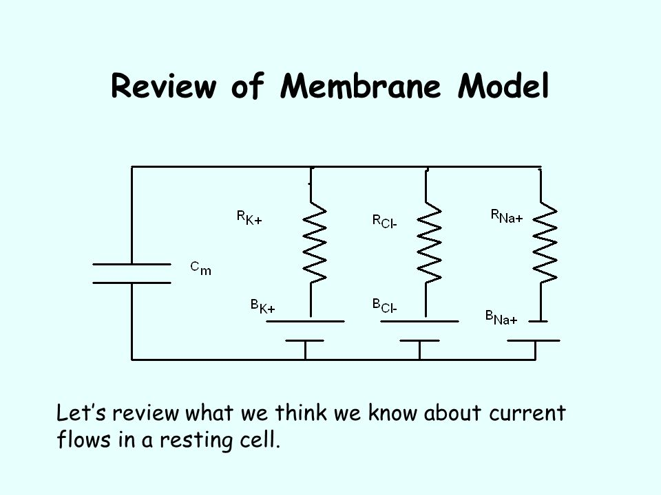 Review of Membrane Model
