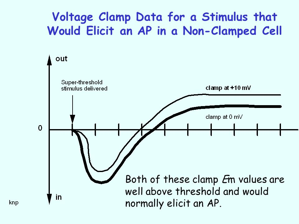 Voltage Clamp Data for a Stimulus that Would Elicit an AP in a Non-Clamped Cell