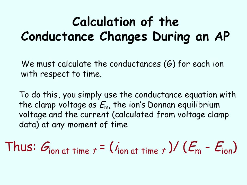 Calculation of the Conductance Changes During an AP