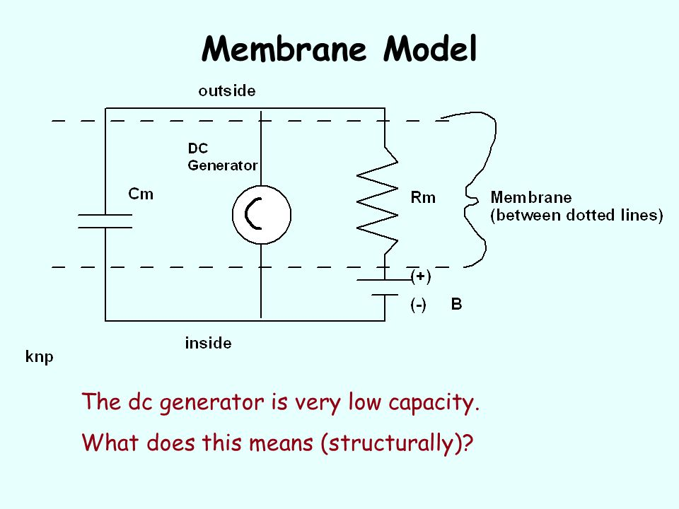 Membrane Model The dc generator is very low capacity.