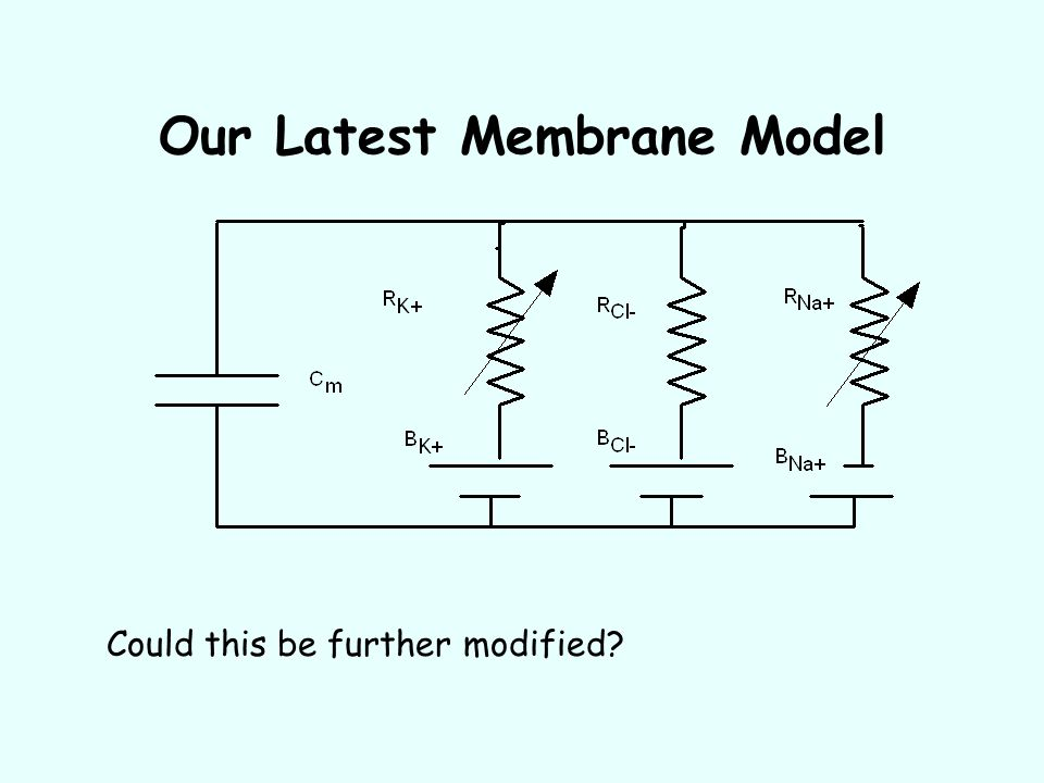 Our Latest Membrane Model