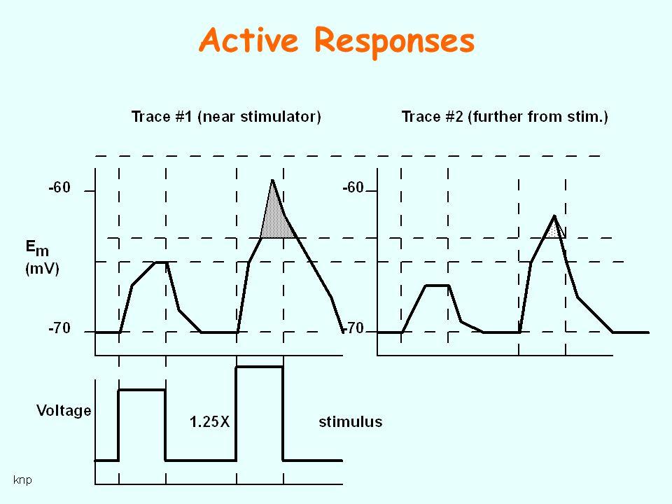 Active Responses