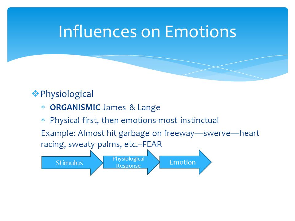 Influences on Emotions