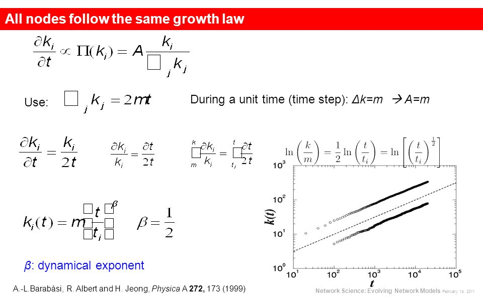 All nodes follow the same growth law