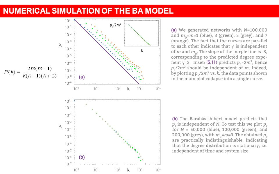 NUMERICAL SIMULATION OF THE BA MODEL