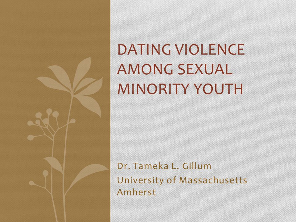 DATING violence AMONG SEXUAL MINORITY YOUTH