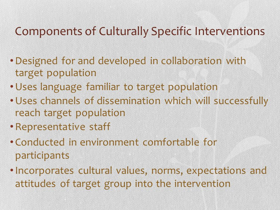 Components of Culturally Specific Interventions