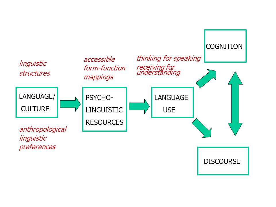 COGNITION thinking for speaking. receiving for understanding. accessible. form-function. mappings.