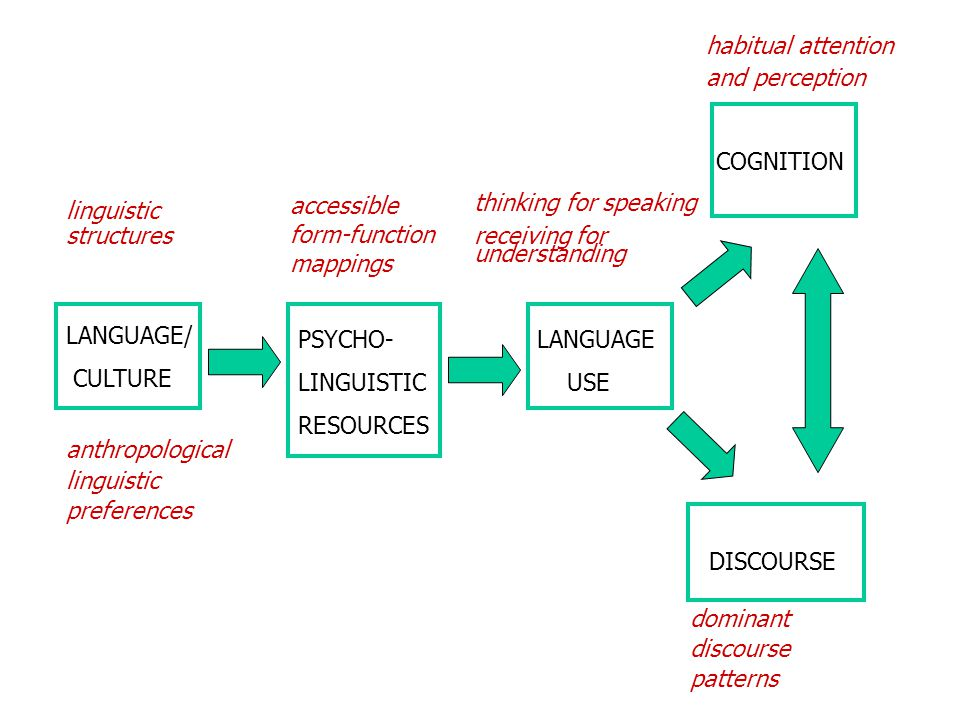 habitual attention and perception. COGNITION. thinking for speaking. receiving for understanding.