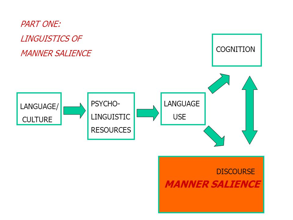 MANNER SALIENCE PART ONE: LINGUISTICS OF MANNER SALIENCE LANGUAGE/