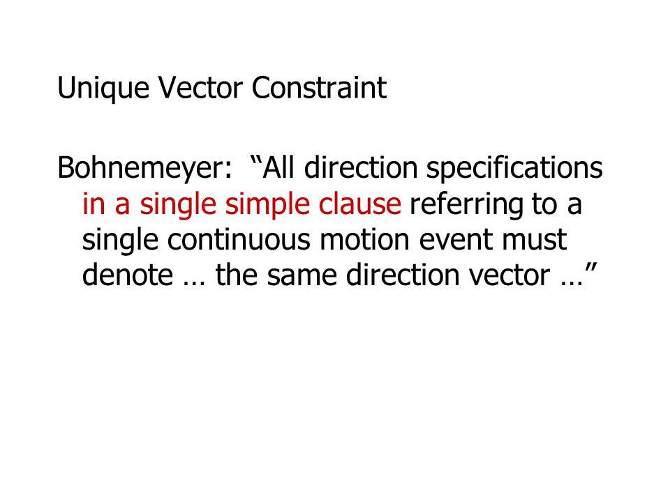 Unique Vector Constraint