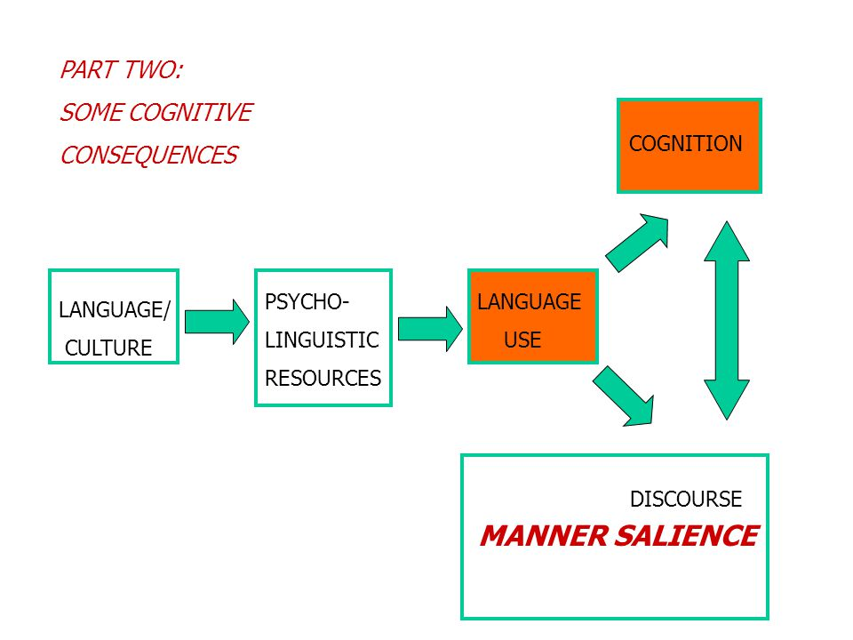 MANNER SALIENCE PART TWO: SOME COGNITIVE CONSEQUENCES LANGUAGE/