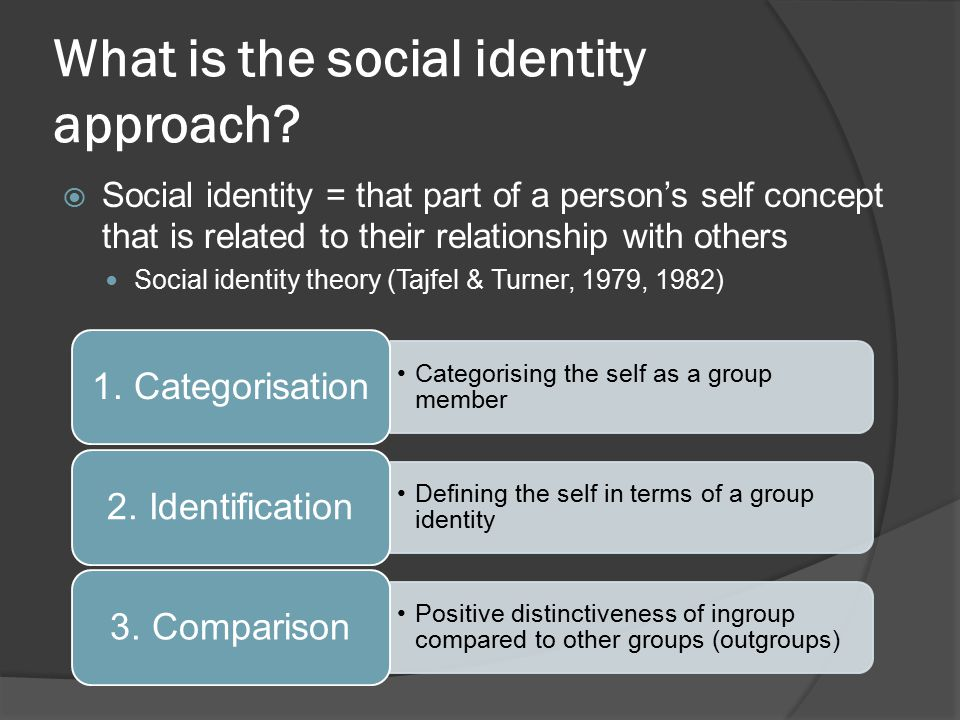 What is the social identity approach