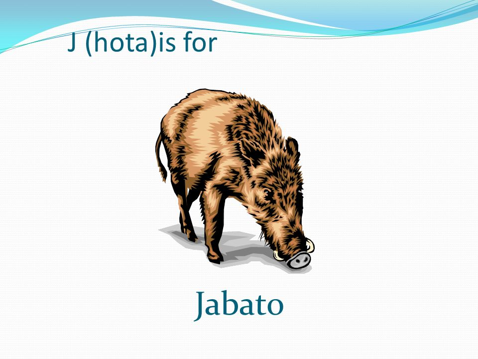 J (hota)is for Jabato