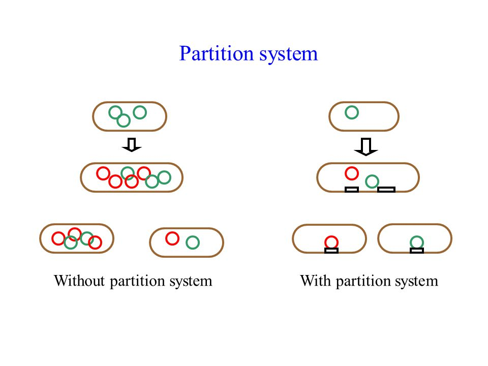 Without partition system
