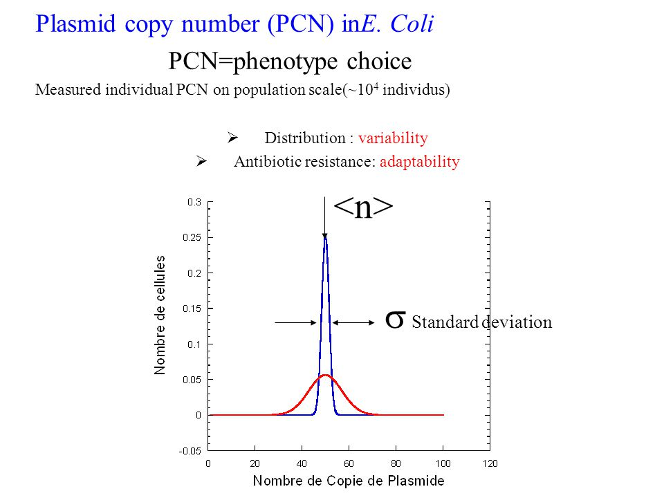 <n> s Standard deviation Plasmid copy number (PCN) inE. Coli