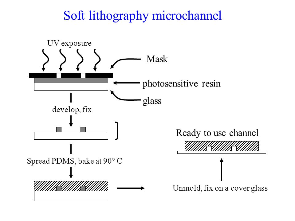 Soft lithography microchannel