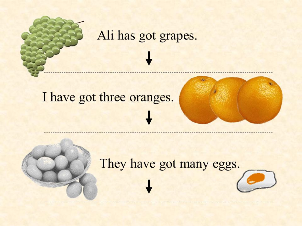 Ali has got grapes. I have got three oranges. They have got many eggs.