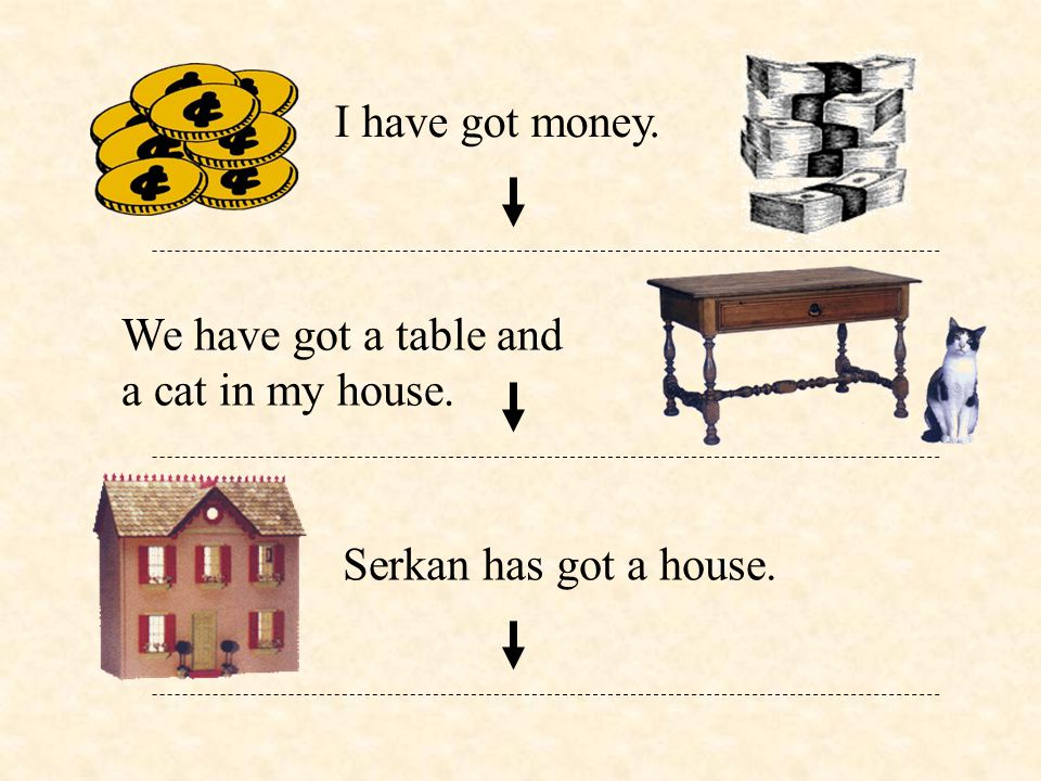 I have got money. We have got a table and a cat in my house. Serkan has got a house.