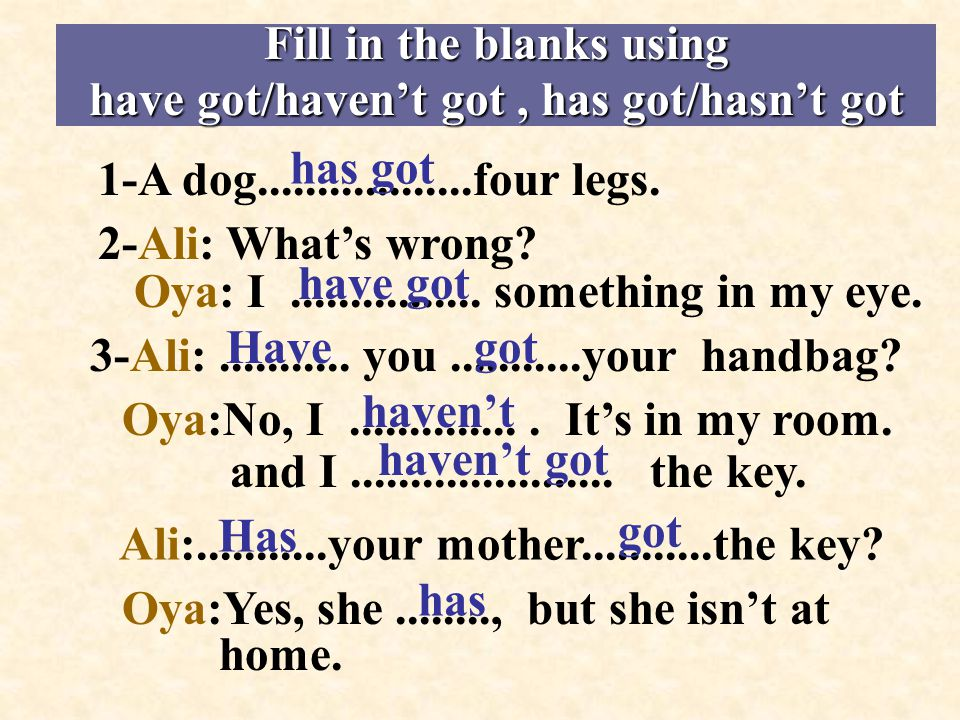 Fill in the blanks using have got/haven't got , has got/hasn't got