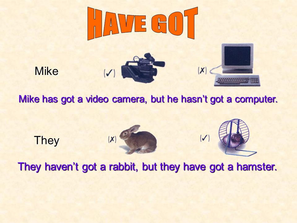 HAVE GOT Mike. Mike has got a video camera, but he hasn't got a computer.