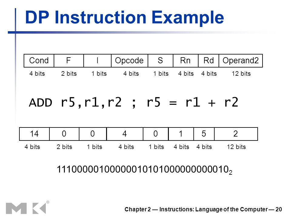 DP Instruction Example