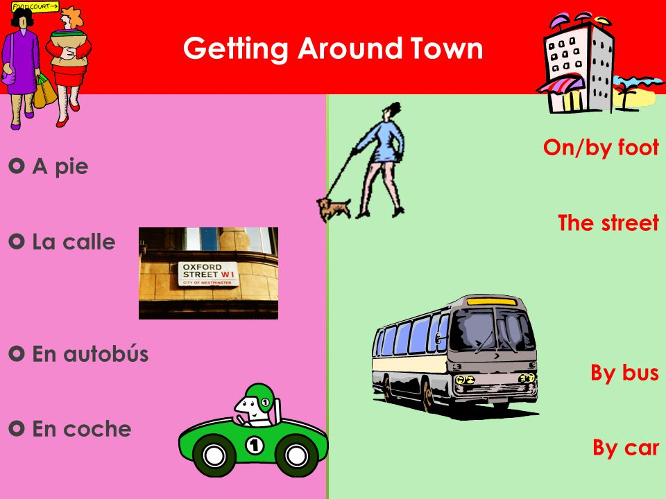 Getting Around Town On/by foot The street By bus By car A pie La calle