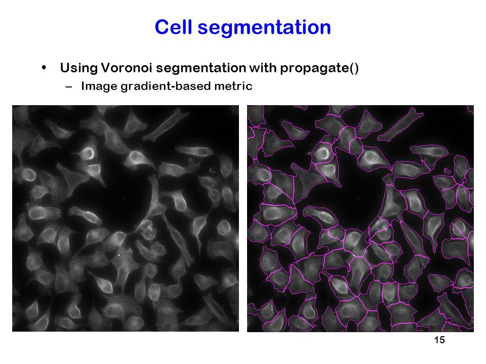 Cell segmentation Using Voronoi segmentation with propagate()