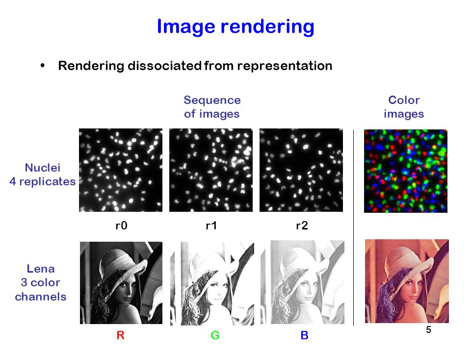 Image rendering Rendering dissociated from representation Sequence