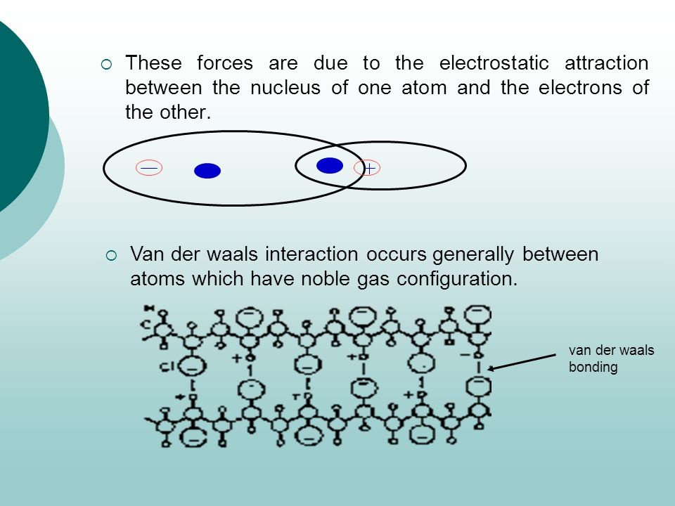 These forces are due to the electrostatic attraction between the nucleus of one atom and the electrons of the other.