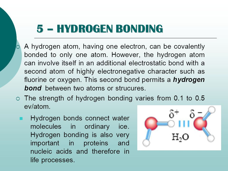 5 – HYDROGEN BONDING