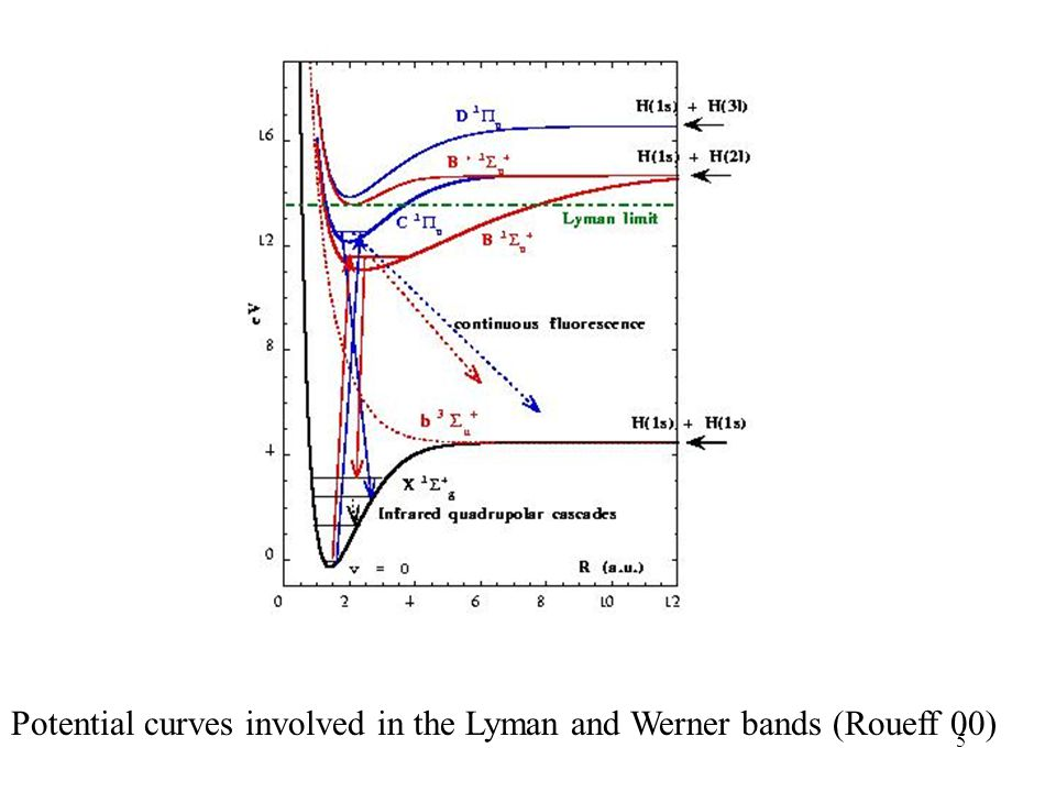 Potential curves involved in the Lyman and Werner bands (Roueff 00)