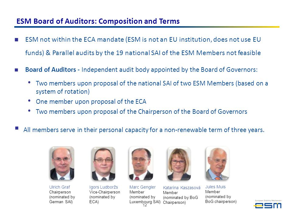ESM Board of Auditors: Composition and Terms