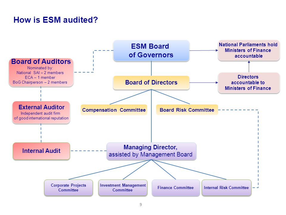 How is ESM audited ESM Board of Governors Board of Auditors