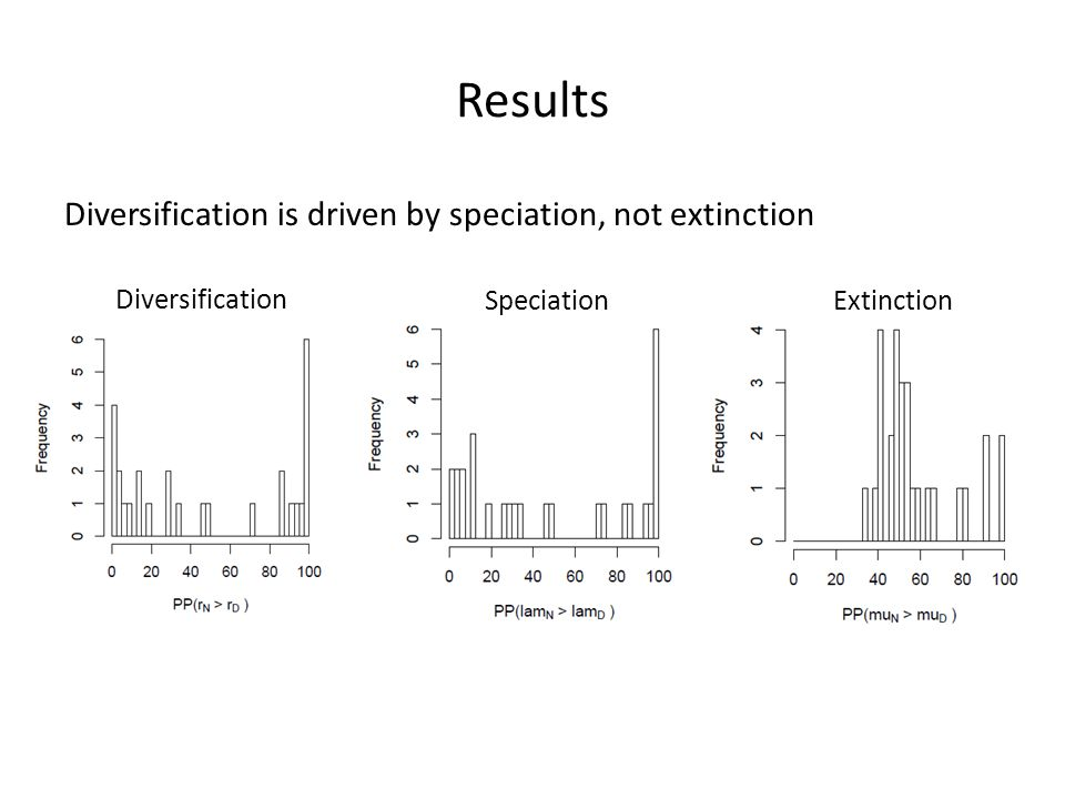 Results Diversification is driven by speciation, not extinction